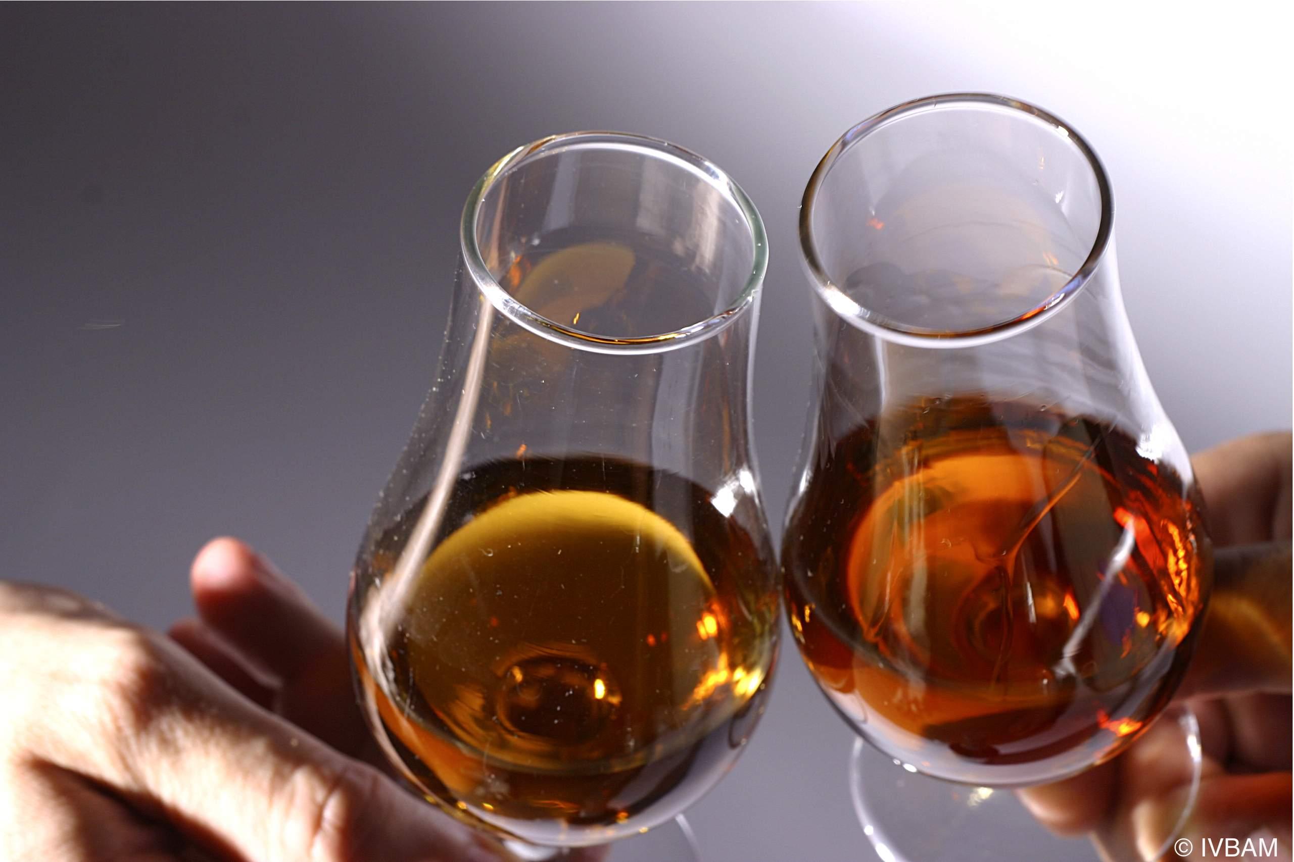 Instituto do Vinha da Madeira Viticulture