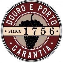 Logo IVDP 2