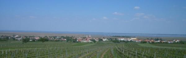 Ausbruch Weinbereitung (Vinifikation)